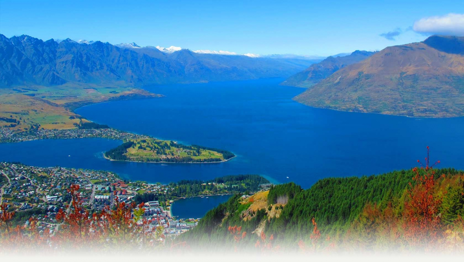 SEO Queenstown Search Engine ...