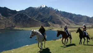 Ben Lomond Horse Treks Ltd.