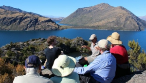 Eco Wanaka - Lake Cruise & Island Walk
