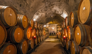 Gibbston Valley Cave and Winery Tours