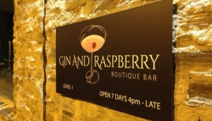 Gin and Raspberry Boutique Bar