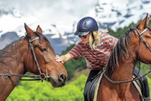 Horse Riding Through Dart Valley
