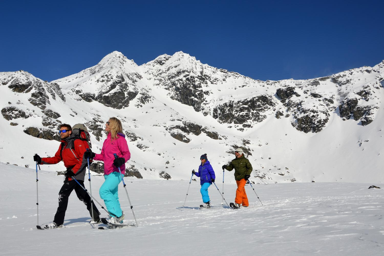 NZ Snowshoe