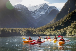 Milford Sound Coach, Cruise & Kayak + Lunch from Queenstown