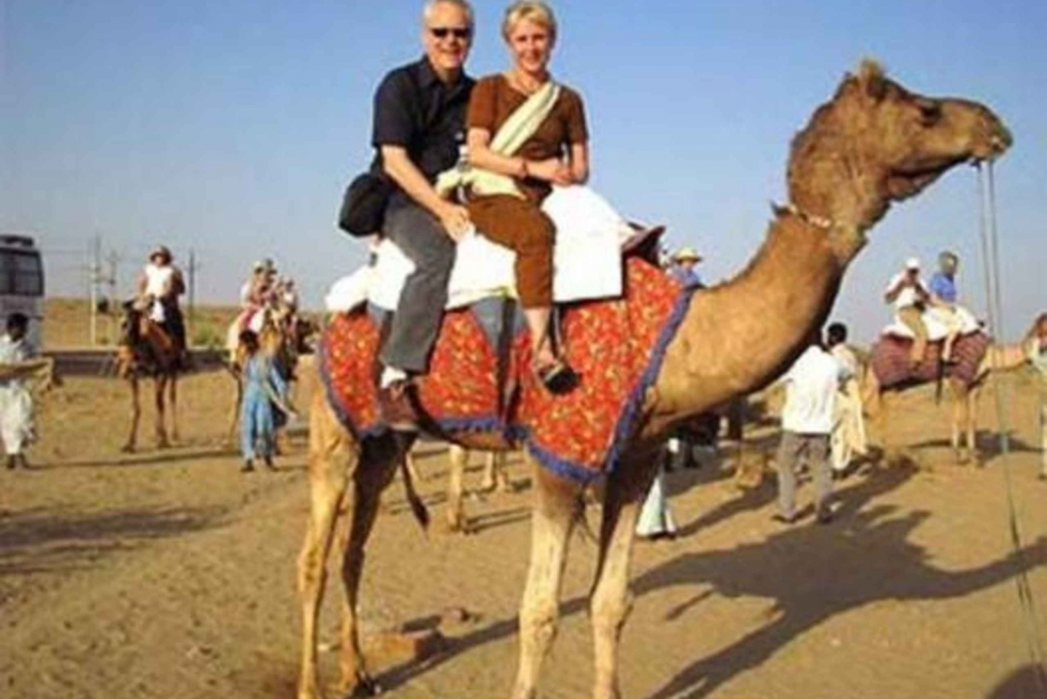 Camel Safari Half - Day Tour In Jodhpur