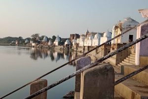 Chambal: Full-Day River Safari Tour from Agra