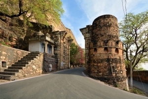 Chittorgarh: Private Day Trip from Udaipur