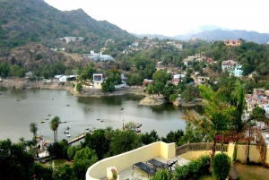 Dilwara Temples & Mount Abu: Private Day Trip with Transfer
