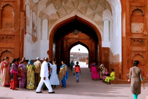 From Jaipur: Same Day Taj Mahal Private Tour
