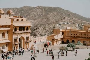 Jaipur: Amer Fort Fast-Track Entry & Optional Guide/Transfer