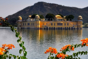 Jaipur: Full-Day Pink City Architecture Tour