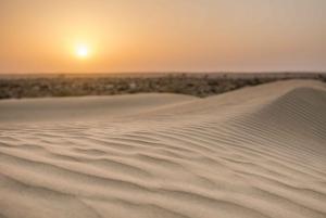 Jaisalmer: 2-Day Thar Desert Experience