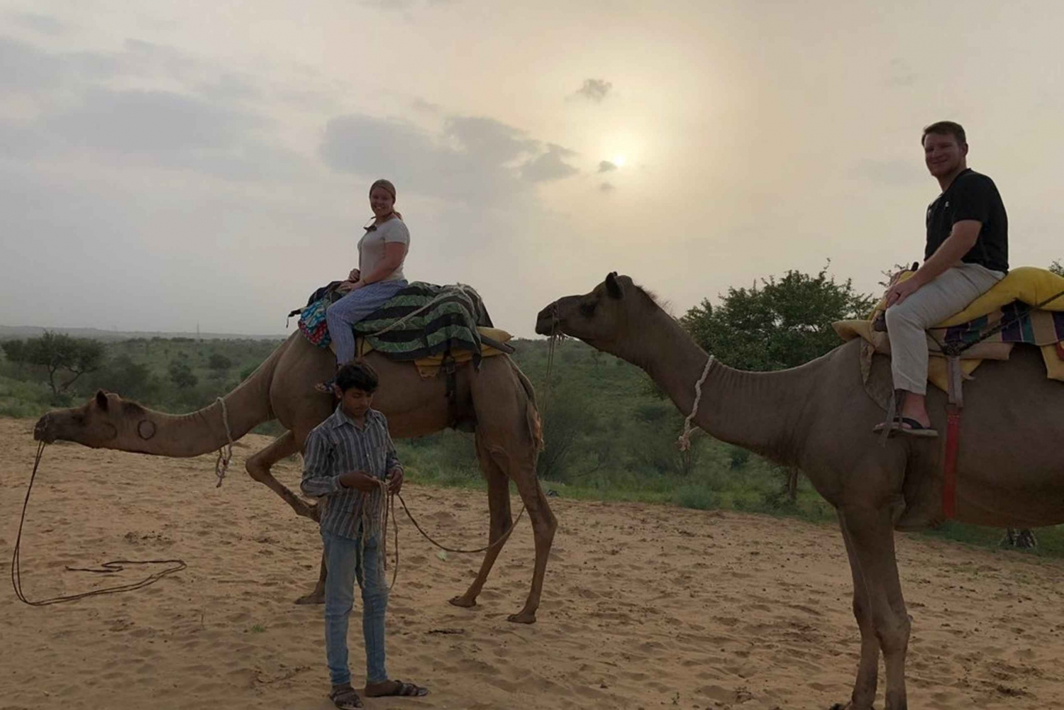 Jaisalmer: Camel Safari Half-Day Tour