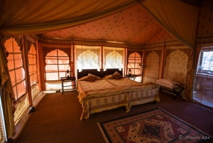 Jaisalmer: Overnight Stay in Swiss Tent with Camel Safari