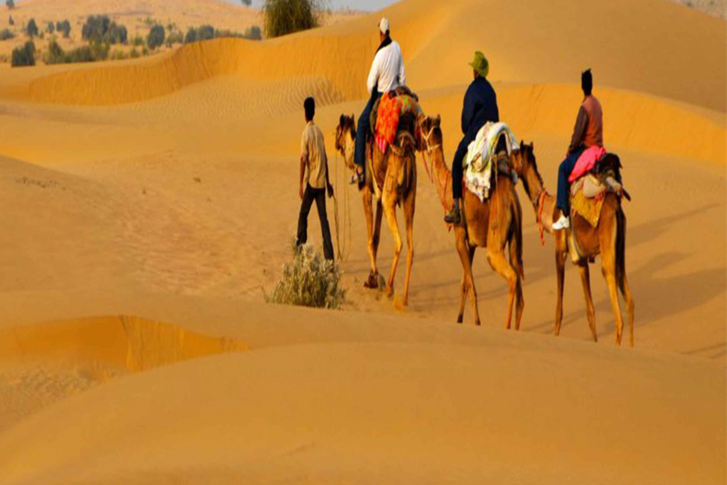Jaisalmer Private City Tour with Camel Safari in Desert