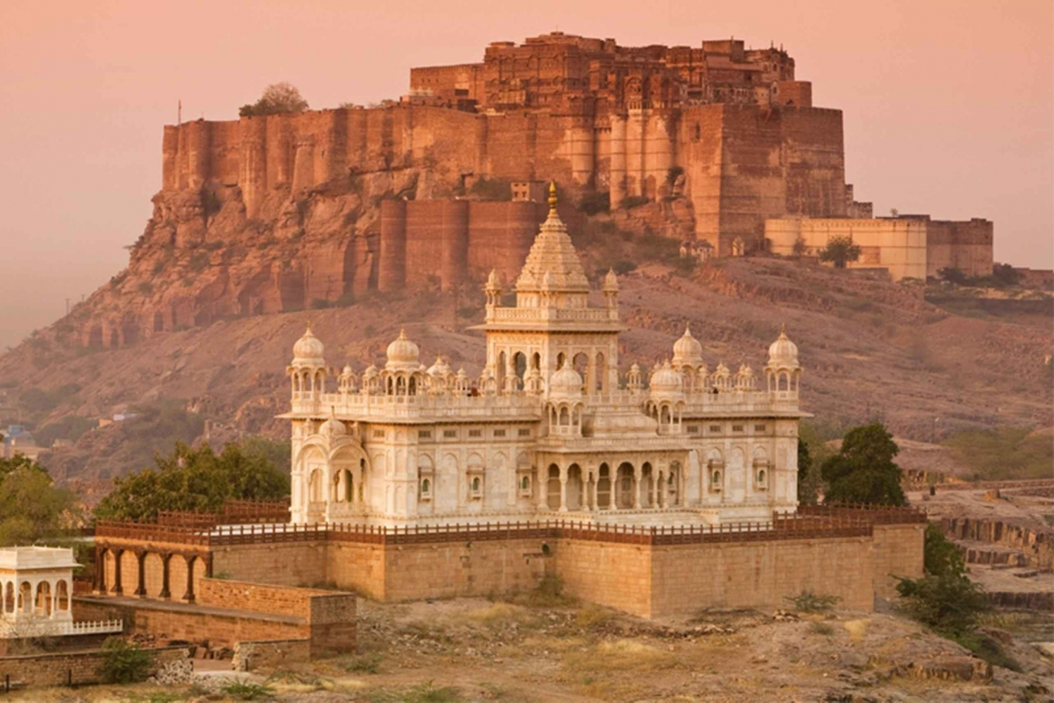 Jodhpur: Full-Day City Private Tour & Camel Safari