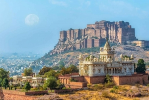 Jodhpur: Guided Highlights Half-Day City Tour