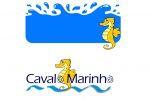 Catamaran Cavalo Marinho