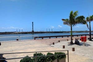 From Recife: Full-Day Shopping & Cachaça Tour