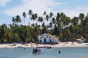 From Recife: Guided Day Trip to Praia dos Carneiros