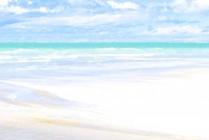 From Recife: Maragogi Beach Day Trip