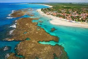From Recife: Porto de Galinhas Beach Day-Trip