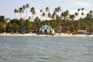 Pernambuco: Carneiros Beach Day Tour with Catamaran Ride