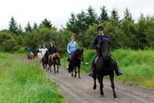 From Full-Day Horse Riding & Golden Circle Tour