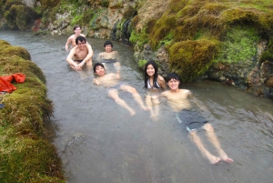 From Reykjadalur Hot Springs Small Group Hike