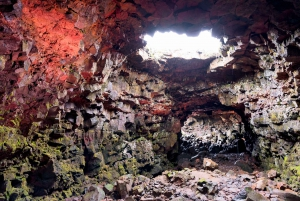 From Reykjavík: ATV Quads and Caves Multi-Activity Day-Tour