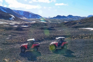 From Reykjavik: Buggy & Whale Watching Adventure