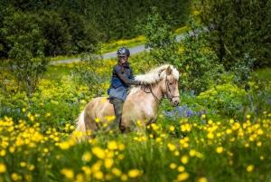 From Reykjavik: Full-Day Horse Riding & Golden Circle Tour
