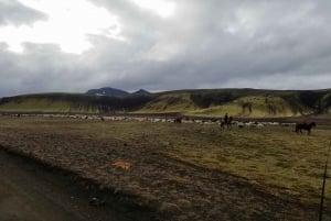 From Reykjavík: Full-Day Jeep Tour of Landmannalaugar