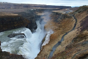 From Reykjavík: Golden Circle and Dairy Farm Visit