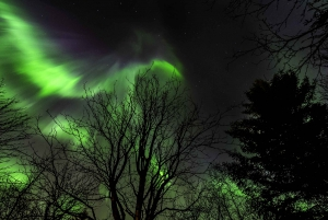 From Reykjavik: Golden Circle and Northern Lights