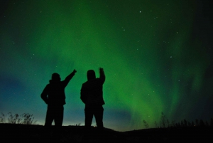 From Reykjavík: Northern Lights Viewing with Hot Chocolate
