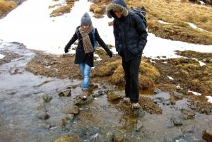 From Reykjavik: Reykjadalur Hot Springs Small Group Hike
