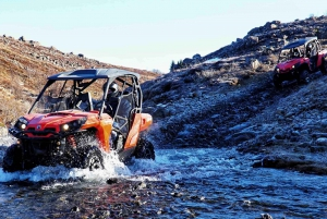 From Reykjavik: Valley of The Thousand Rivers Buggy Tour