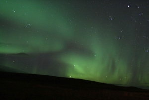 From Reykjavík: Whale Watching and Northern Lights Combo