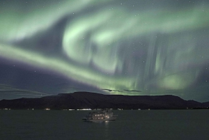 From Reykjavik: Whales and Northern Lights Boat Tour