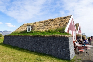 From Reykjavik: Wonders of Snaefellsnes Private Tour