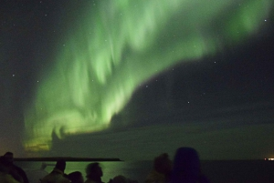 From Whales and Northern Lights Boat Tour