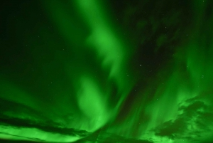 Golden Circle & Northern Lights Winter Small Group Tour