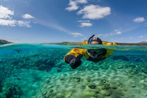 Golden Circle & Silfra Snorkeling Small Group Tour