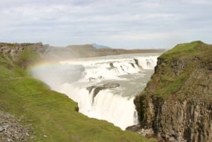 Iceland's Golden Circle & Whale Watching Full-Day Tour
