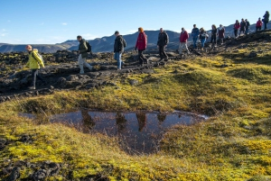 Inside the Thrihnukagigur Volcano: Day Trip from Reykjavik