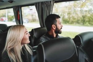 Keflavik Airport & Reykjavik Hotels: Economy Bus Transfer