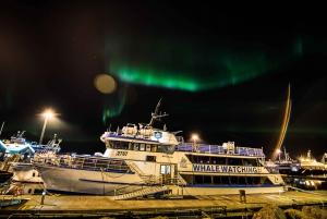 Northern Lights by Boat in Reykjavik
