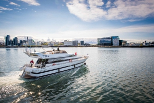Northern Lights Luxury Yacht Cruise