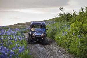 Reykjavik Buggy Safari Tour